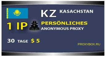 KZ 1 IP Der Persönliche Proxi