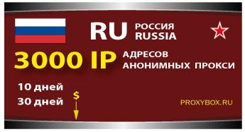 РОССИЯ - 3000 IP адресов