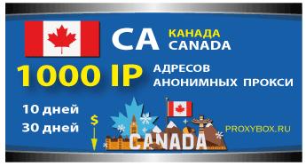 КОД продления КАНАДА 1000 IP адресов