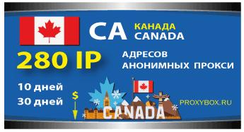 Канадские прокси 280 IP адресов