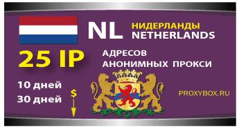 Нидерландские прокси 25 IP адресов