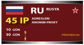 Rusya proxy - 45 IP adresleri