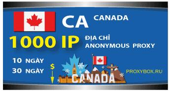 CANADA. 1000 địa chỉ IP