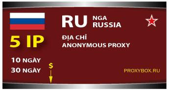 Russia 5 IP
