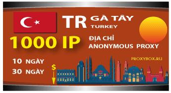 GÀ TÂY. 1000 địa chỉ IP
