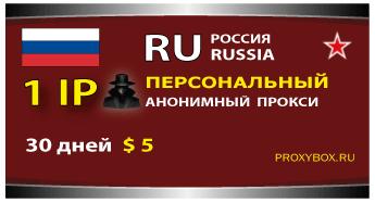Персональный прокси Россия 1 IP адрес