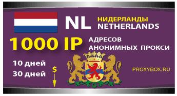 Прокси Нидерландов 1000 IP адресов