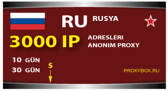 3000 IP Rusya proxy
