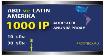 ABD ve Latin Amerika - 1000 IP Adresi